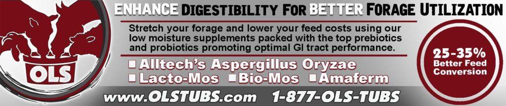 Livestock Feed Supplements OLS Tubs