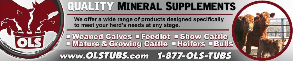 Quality OLS Tubs Mineral Supplements